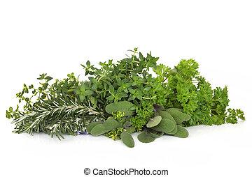 zioła, rozmaryn, szałwia, pietruszka, tymianek