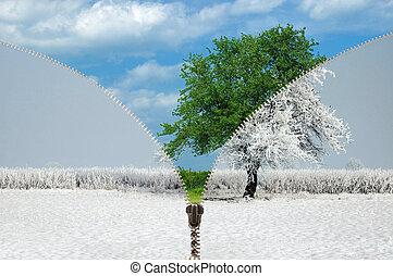 Zipper changing seasons - Zipper and changing seasons,...