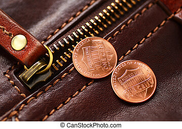 Zipper fastener and penny