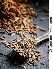 Zira or cumin in a metal spoon on a dark background, close-up, selective focus, shallow depth of field