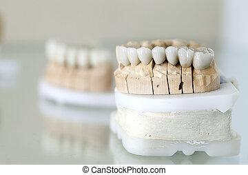 Zirconium Porcelain Tooth plate