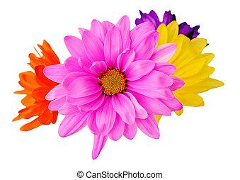 zmieszać, kwiat