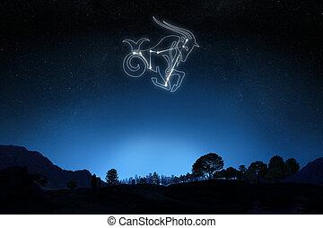 Zodiac Capricorn