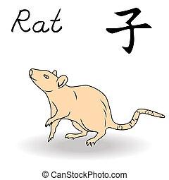 zodiac, oostelijk, rat, meldingsbord