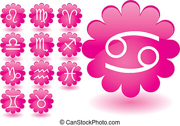 Zodiac Pink Flower