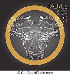 Zodiac sign Taurus on black background.