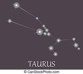 zodiaco, segno., toro