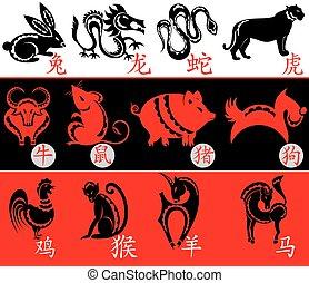 zodiaque, conception, chinois, signes