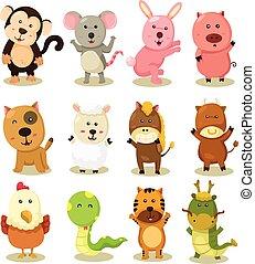 zodiaque, ensemble, illustrateur, animal