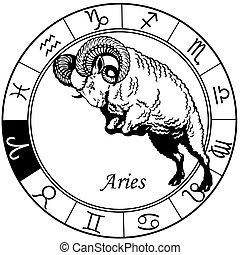 zodiaque, noir, blanc, bélier