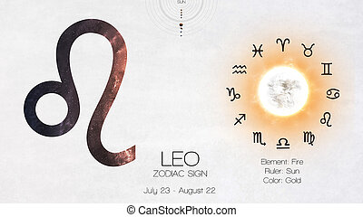 zodiaque, signe, -, leo., frais, astrologic, infographics., éléments, de, ceci, image, meublé, par, nasa