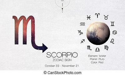 zodiaque, signe, -, scorpio., frais, astrologic,...