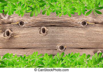 zoet, bladeren, hout, woodruff, frame