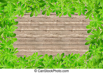 zoet, bladeren, woodruff, frame
