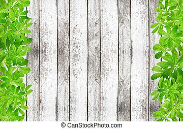 zoet, frame, woodruff, bladeren