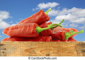 zoete peperen, fris, bos, rood