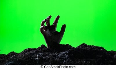 Zombie hand emerging from the ground. Green screen. 005 -...