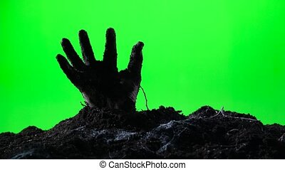 Zombie hand emerging from the ground. Green screen. 006