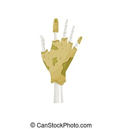 Zombie hand on white background. Vector illustration.