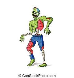 Zombie man colorful illustration