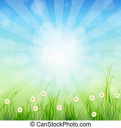 zomer, abstract, achtergrond, met, gras, en, tulpen, tegen,...