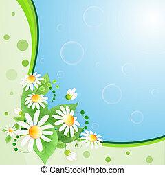 zomer, achtergrond, met, bloemen