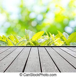 zomer, achtergrond