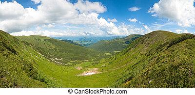 zomer, berg, weide, panorama