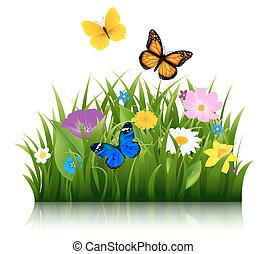 zomer, bloemen, met, vlinder