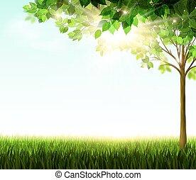 zomer, boompje, groene, glade.