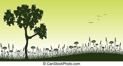 zomer, boompje, weide, landscape