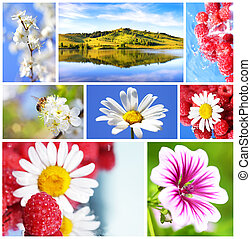zomer, collage
