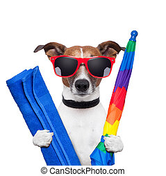 zomer, dog, feestdagen