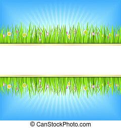 zomer, gras, groene achtergrond