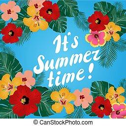 zomer, informatietechnologie