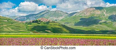 zomer, landscape, italië, umbria, grande, piano