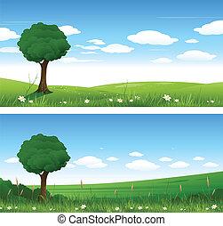 zomer, landscape, natuur