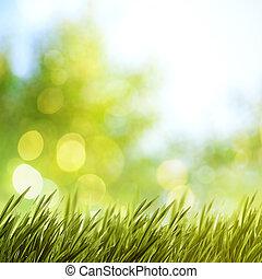 zomer, natuurlijke , achtergronden, voor, jouw, ontwerp