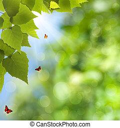 zomer, natuurlijke schoonheid, lente, achtergronden, bokeh