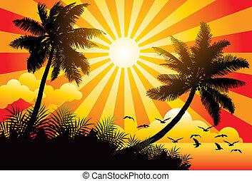 zomer, paradijs