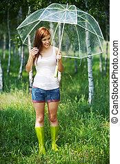 zomer, regenachtige dag, in, bos