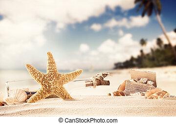 zomer, strand, met, strafish, en, doppen