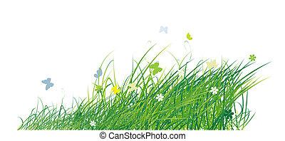 zomer, vlinder, groene achtergrond, akker