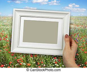 zomer, vrouw, van hout vensterraam, handen, achtergrond, klaprozen, bloemen, landscape