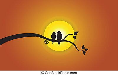 zon, avond, hemel, liefdevogels, sinaasappel