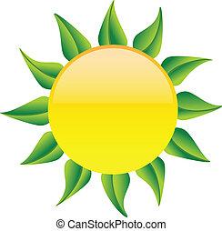 zon, bladeren, groene