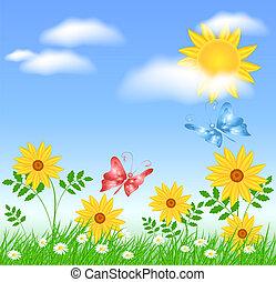 zon, bloemen, weide