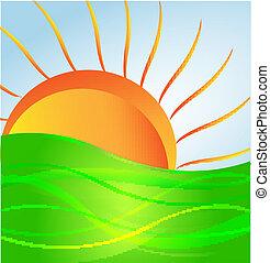 zon, vector, groene heuvel
