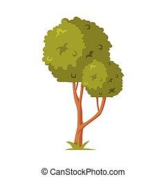 zona, parque, elemento, follaje, árbol, vector, ilustración, exuberante, verde
