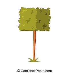 zona, parque, formado, elemento, follaje, vector, ilustración, arbusto, exuberante, verde